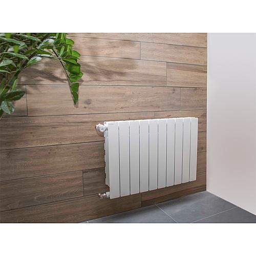 ws aluminiumheizk rper blitz super b4 typ 350 100. Black Bedroom Furniture Sets. Home Design Ideas
